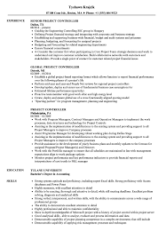 Sample Controller Resume Project Controller Resume Samples Velvet Jobs 16
