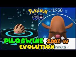 Swinub Max Cp For All Levels Pokemon Go