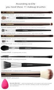 you need according 11 makeup brushes every woman needs photo apply
