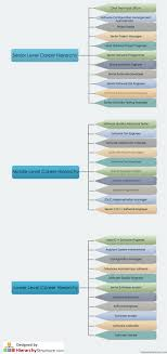 Software Engineer Designations Software Career Hierarchy Career Structure Of Software