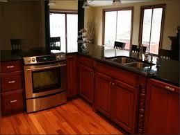 Kitchen Cabinet Refacing S Black Kitchen Cabinets Lowes Design Porter