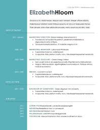 modern resume templates in word •  blue side
