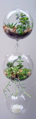 Terrarium Glass Hanging Double Hook Vertical Gardening DIY NO PLANTS A  great DIY for all ages Terrariums are also a perfect gift idea for Moms,  sister, ...