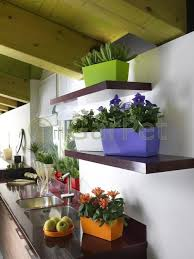 Blumentopf Kunststoff Hochglanz Orchideen Kräuter über Topf Küche