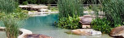 natural looking in ground pools. Natural Looking In Ground Pools U
