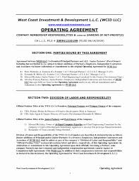 Business Operating Agreement Michigan Llc Operating Agreement Template Free Unique Sample 18