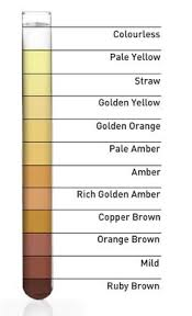 Urine Color And Clarity Chart