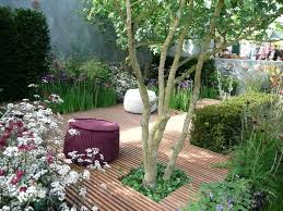 Small Picture Garden Design Ideas For Disabled The Garden Inspirations