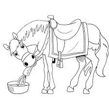Disegno Di Il Cavallo E La Carota Da Colorare Per Bambini