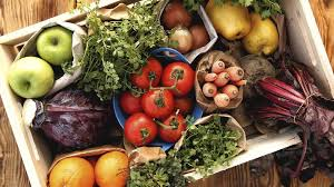 Human Nutritional Needs Chart 6 Essential Nutrients What They Are And Why You Need Them