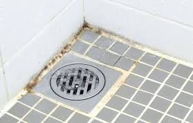 how to get rid of black mold in shower how to remove black mold from bathroom