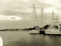 deale md harbor cove marina