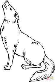 Small Picture Coyote 9 coloring page Free Printable Coloring Pages