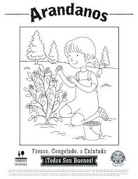 Coloring Pages In Spanish Colors Rainbow Coloring Page From Miss