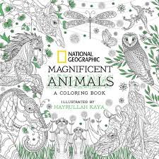 Small Picture National Geographic Magnificent Animals National Geographic Store