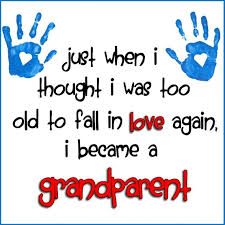 Quotes About Grandchildren Extraordinary 48 Quotes About Grandchildren Being A Blessing QuotesBae