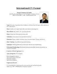 American Format Resume It Resume Cover Letter Sample