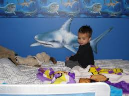 Modern Shark Bedroom Theme Design And Decor Ideas For Kids Idolza