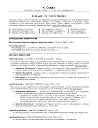 Computer Programmer Resume Examples Software Programmer Resume