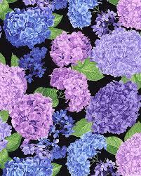 Hydrangea - Elizabethan Blooms - Quilt Fabrics from www.eQuilter ... & Hydrangea - Elizabethan Blooms - Quilt Fabrics from www.eQuilter.com Adamdwight.com