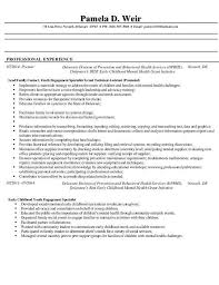 Examples Of Student Resumes Elegant High School Student Resume