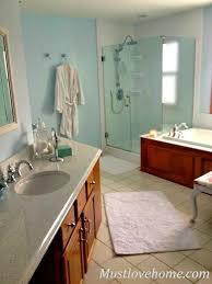 Bathroom Redo New Decorating Ideas