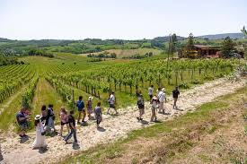 tuscany 1 day sightseeing tour with