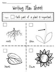 Small Picture Use this printable to help reinforce what students know about