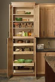 Pantry Cabinet: Single Door Pantry Cabinet with Storage Solutions ...