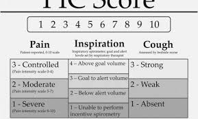 Incentive Spirometer Goal Chart Incentive Spirometer Volume Goal Chart Www
