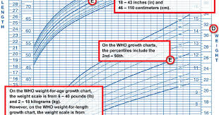 Late Bloomer Growth Chart What Do Growth Charts Mean Care Com