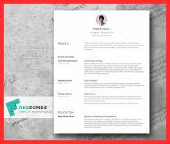 Clean Resume Format Good Resume Format