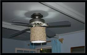 ceiling fan hunter douglas shades glass globes lancaster