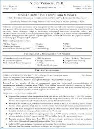 Technical Writer Resume Samples Technical Resume Examples Cute Junior Technical Writer Resume