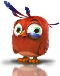 Timothy   Angry Birds Wiki