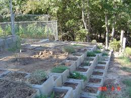 specialty gardening concrete block containers for raised beds 1 by tarogers5