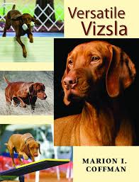 Versatile Vizsla: Marion I. Coffman: 0697987905611: Amazon.com: Books