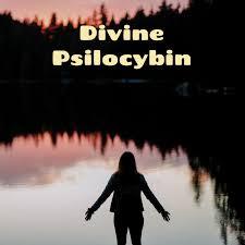 Divine Psilocybin - Magic Mushrooms and Psychedelic Talks