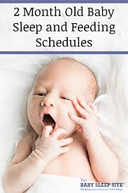 2 Month Old Baby Schedule Sample Schedules The Baby