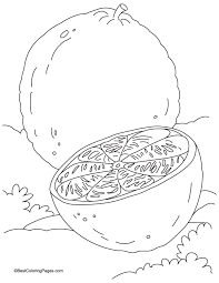 Small Picture Orange and its half coloring page Download Free Orange and its