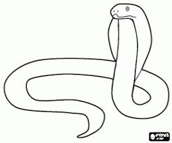 Kleurplaat Een Giftige Slang Een Cobra Kleurplaten