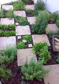 Small Picture Backyard Herb Garden Ideas Garden Design Ideas