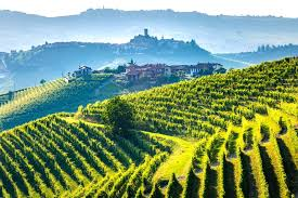 12 best tuscany wine tours from
