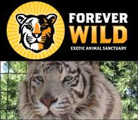 Image result for forever wild exotic animal sanctuary