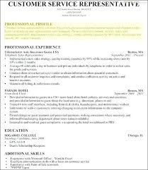 Professional Profile In Resumes Professional Profile For Resume Resumes Sample Professional Profile