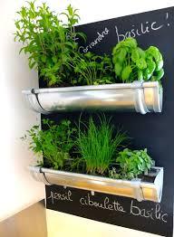 countertop herb garden gutter herb garden grow your own kitchen countertop herb garden