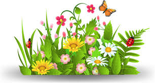 spring flowers border clipart. Perfect Border Spring Flower With Grass Art Background In Spring Flowers Border Clipart P