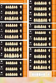Mould Chart Yamahachi Dental Mfg Co Pdf Catalogs