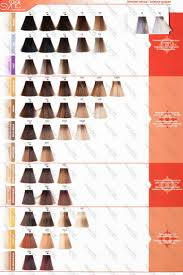 16 Clairol Professional Hair Color Chart