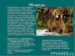 Животные России класс презентация к уроку Окружающий мир Медведь Медведей относят к числу наиболее сообразительных и умных зверей Хорошо известно что